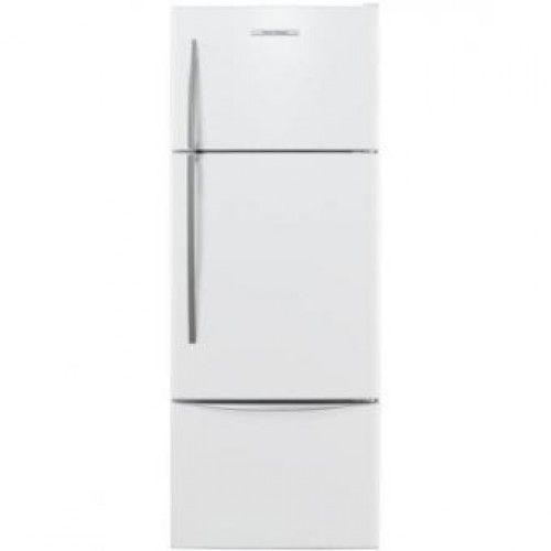 Fisher & Paykel 飛雪 E415HRE3 411公升 三門雪櫃